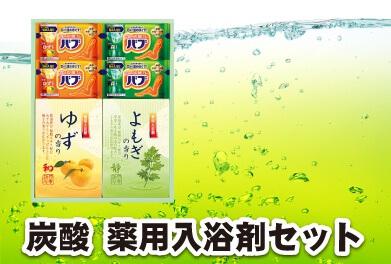 炭酸 薬用入浴剤セット