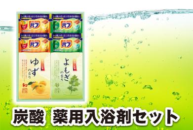 炭酸薬用入浴剤セット
