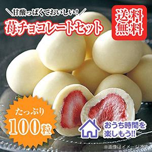 【送料無料】苺チョコレート 100粒セット