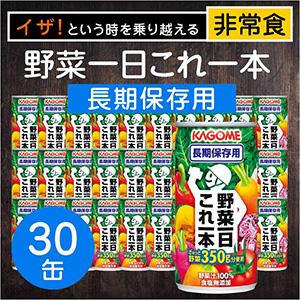 カゴメ 野菜一日これ一本長期保存用 30缶