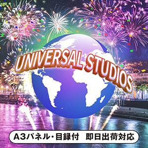 ユニバーサルスタジオジャパン1dayペアチケット【パネル・目録付】