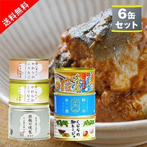 【送料無料】木の屋石巻水産 アウトレット缶詰6種セット