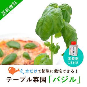 【送料無料】テーブル菜園「バジル」+栄養剤1本