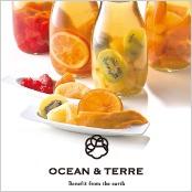 -OCEAN & TERRE-ドライフルーツティー