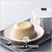 -OCEAN & TERRE-北海道ミルクプリン