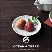 -OCEAN & TERRE-Premium 紀州南高梅